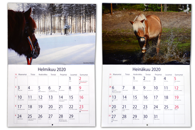 kalenteri_helmiheina